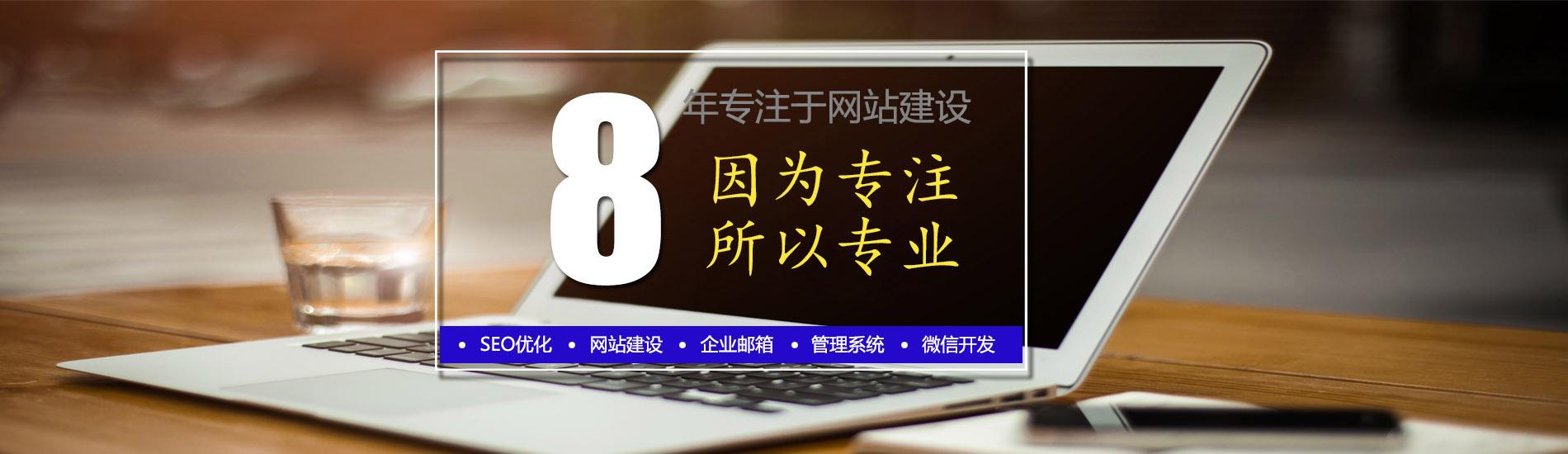 专业seo网站优化、网站制作、Google推广、微信小程序开发等